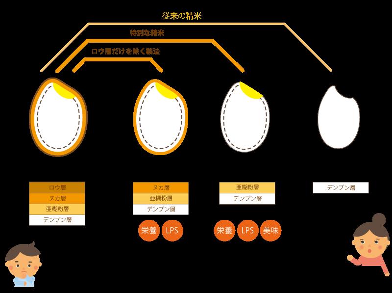 米の加工方法